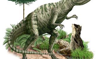 Ilustración allosauro