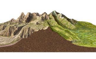 Ilustración zonas templadas